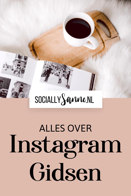 Alles over Instagram Gidsen Pin 1